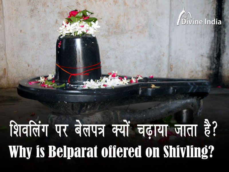 Why is Belparat offered on Shivling?